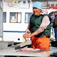 Vieux-Port, Balade sur le marché aux poissons du Vieux-Port, Made in Marseille